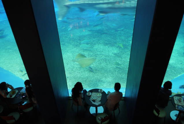 沖縄水族館